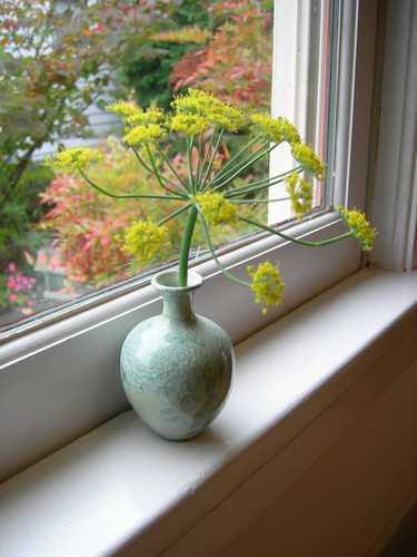 Fennel flower in green vase