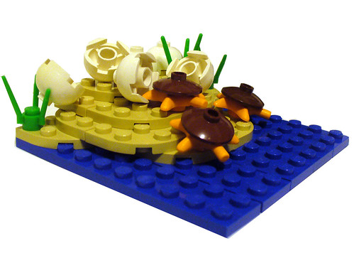 turtle power 1