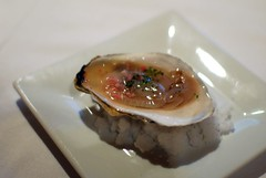 Maine Oyster