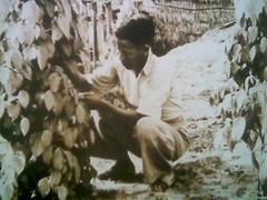 Old Sibu 3