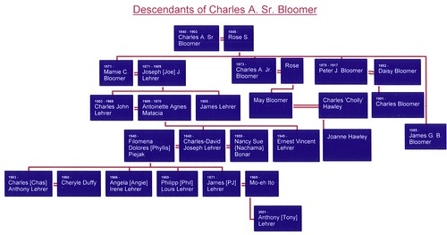 Charles A. Bloomer, Sr. Family Tree02