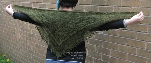 moss shawl 4