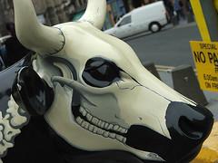 SCARY COW!!! MWAHAHAHAHA!!!