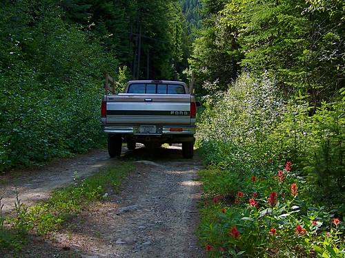USFS road 7581