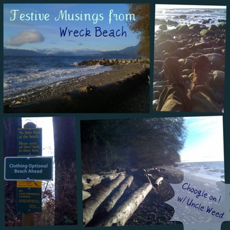 Festive Musing from Wreck Beach - Choogle on