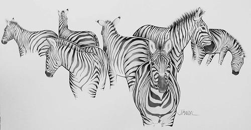 Zebra Patterns Art in the Woods - Janet Mandel