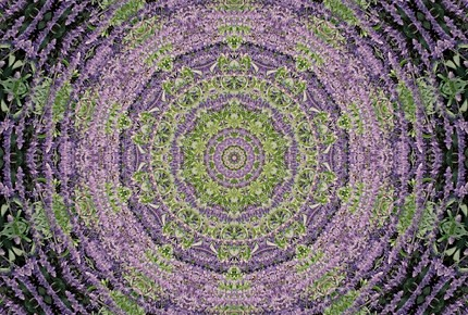Purple & Green Kaleidoscope