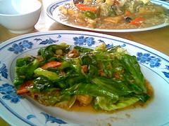 SF's baby kailan and tofu
