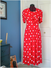 04.09.08 {the polka dot frock | original full length}