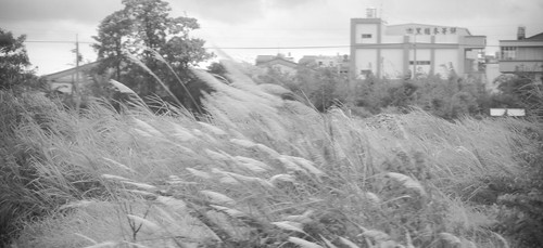 09/12 14:41: 風雨欲來