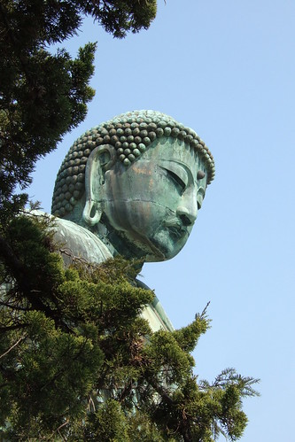Buddha and trees