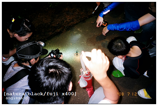 b-20080712_natura_096_iso4_018.jpg