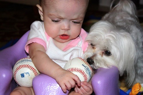 NO, RIGBY!!! THESE ARE MY BASEBALLS!!!