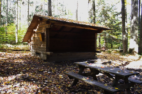 Shelter and Picnic Table