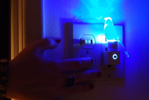 7 Days: Day 7 (Blue Canary in the Outlet by the Light Switch)