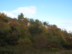 The bluffs, hidden by the trees