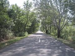 Út Bucsára