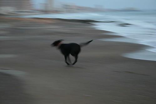 La nena disfrutando en la playa