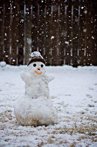 Mr. Snow Dwarf