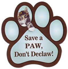Save A Paw, Don't Declaw!