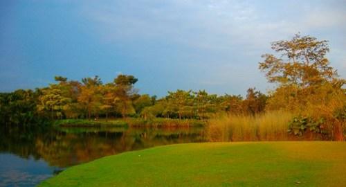 Botanic Garden lake