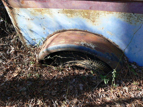 Camden County Jeep Trail - Car Fossil - Sunken Tire