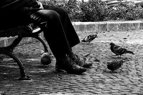 Foto Il pensionato, Guccini© by esci_le_foto - flickr
