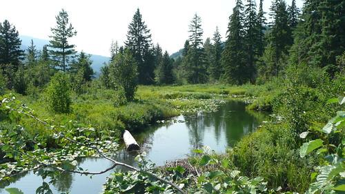 Whistler Lakes 034