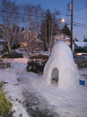 Front Yard Igloo