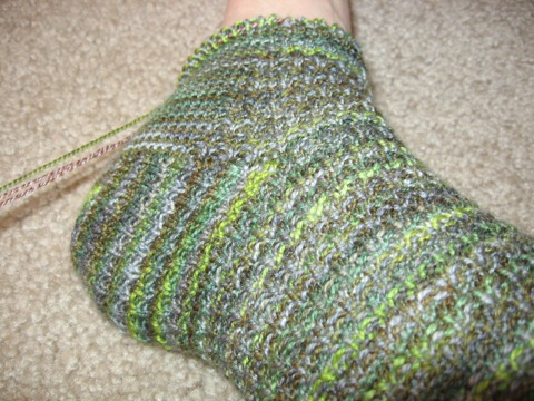 Lizard foot sock
