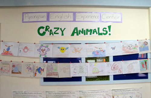Crazy Animals!