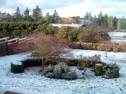 Vashon snowfall