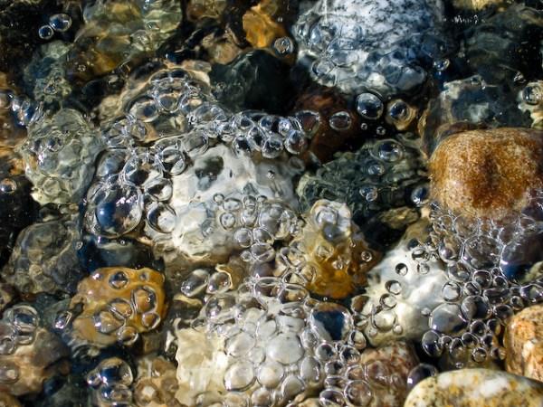 Shuswap Lake Bubbles