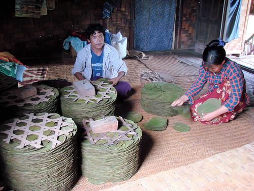 Preparación de hojas de cheroot