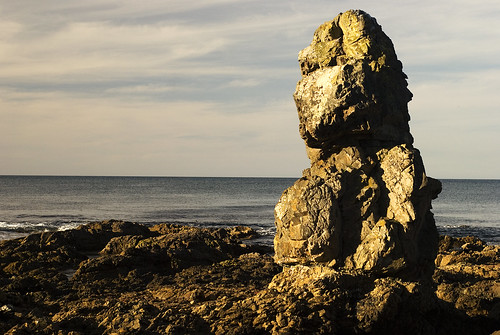 This rock in Makara Bay, Wellington... appears to stare longingly at the South Island - I was too!