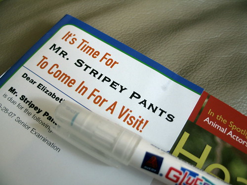 Its Time For Mr. Stripey Pants To Come For A Visit!, Minneapolis, Minnesota, September 2008, photo © 2008 by QuoinMonkey. All rights reserved.