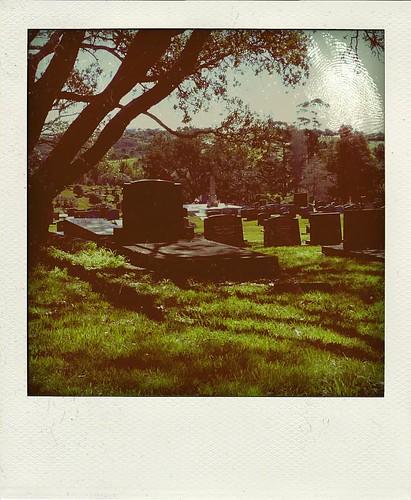 Graveyard Poladriod
