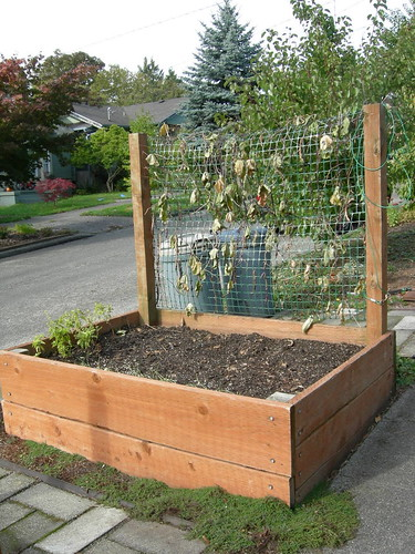 Planter box & trellis