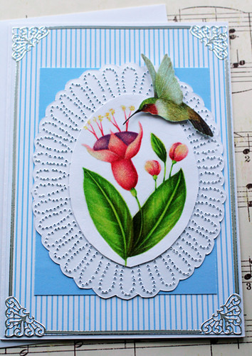 Sweet Hummingbird Note Card