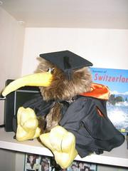 In lieu of graduation
