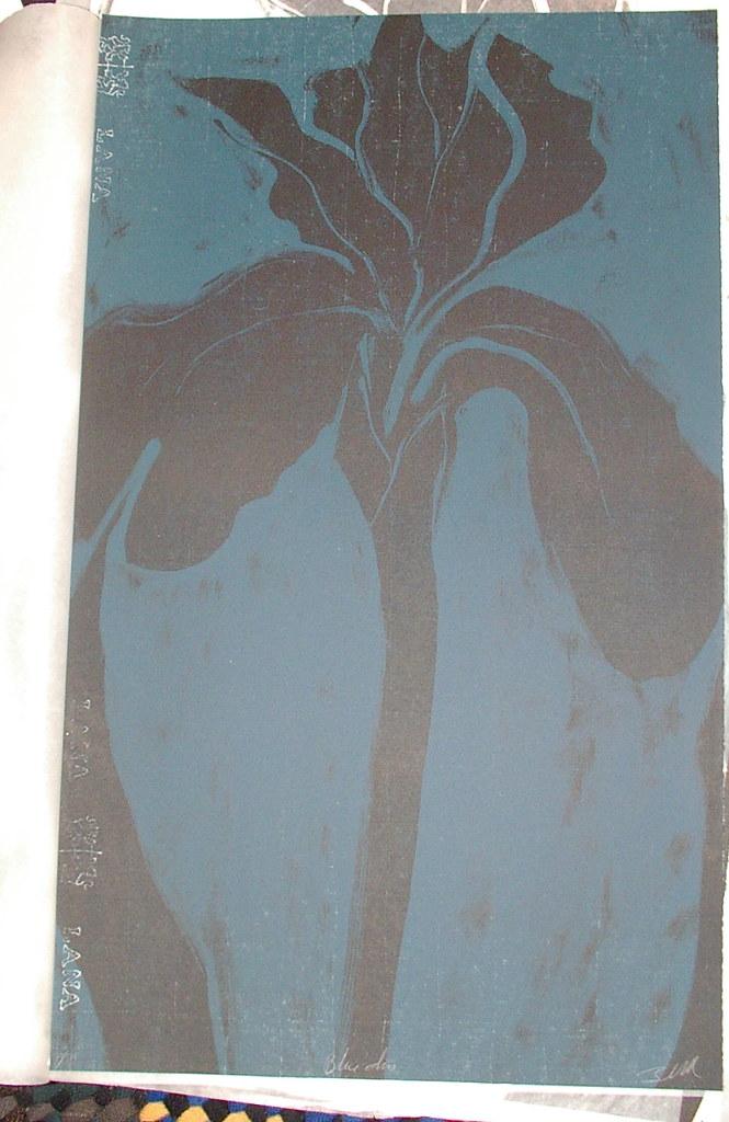 iris (lithograph) two run print on lana paper
