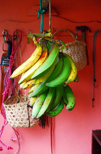 Bananas in Costa Rica by RainyDays3