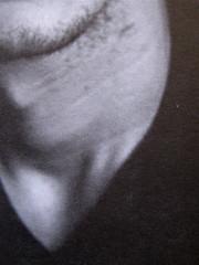 Abdellah Taïa, L'esercito della salvezza, ISBN 2009; Grafica di Alice Beniero; q. di cop.: ill. fotog. b/n: ritratto dell'autore (i credits della foto non sono indicati): verso della q. di copertina (part.), 5