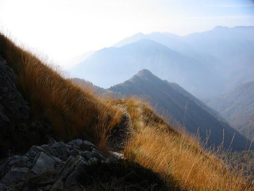 Il sentiero di paglia by you.
