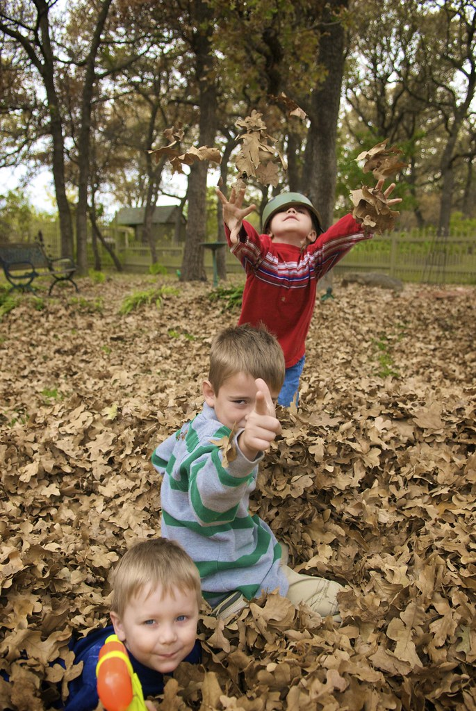 Kids in the Leaves (Thanksgiving '08)