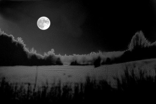 Full Moon Night after the Snow