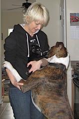Zoe & Bones the boxer with Sarah