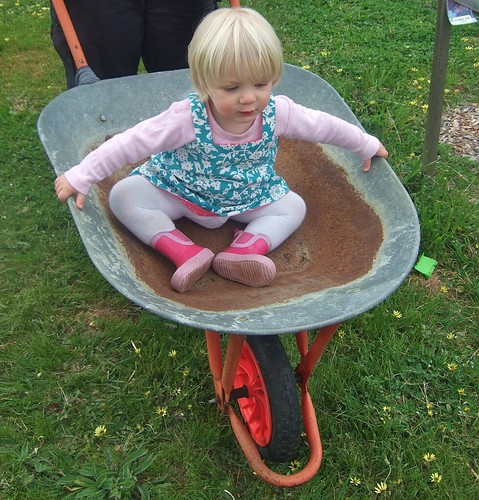 Alice in a wheelbarrow