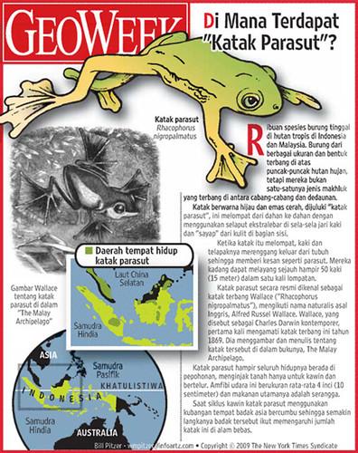 Geoweek - Katak Parasut