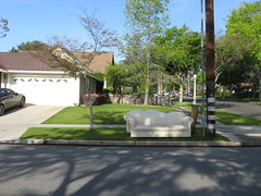 couches in Pasadena